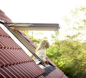 мансардные окна в Джанкое встречаются все чаще
